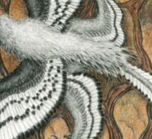 Anchiornis huxleyi Sticker