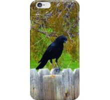 The Crow (Soul Seeker) - Jeronimo Rubio Photography 2016 iPhone Case/Skin