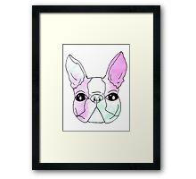 Pastel Boston Terrier Framed Print