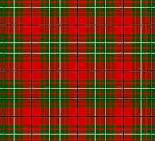 Clan Cumming Tartan by thecelticflame