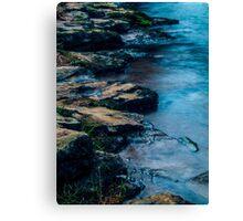 Moonlit Water's Edge Canvas Print