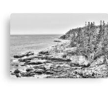 Acadia National Park in Black and White Canvas Print