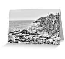 Acadia National Park in Black and White Greeting Card