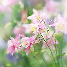 Fantasy Pink by Rebecca Cozart