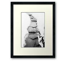 Path Laid in Stone Framed Print