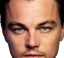 Leonardo DiCaprio Oscar Sticker