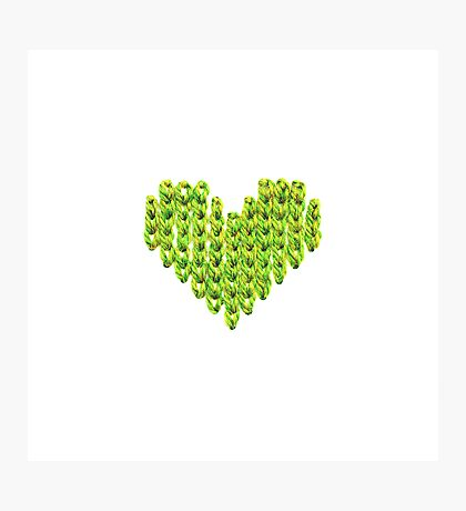 Knit Heart Photographic Print