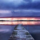Purple rain by LadyFi
