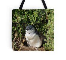 Little Penguin, Phillip Island Tote Bag