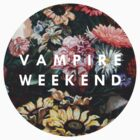 Vampire Weekend by arcticmonkis