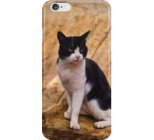 I am the Cat iPhone Case/Skin