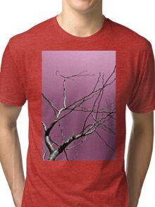 Reaching Violet Tri-blend T-Shirt