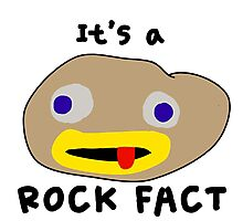 It's a Rock Fact! Photographic Print
