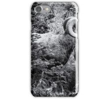 Two Rams BW iPhone Case/Skin