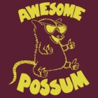 Awesome Possum by youveseenthese