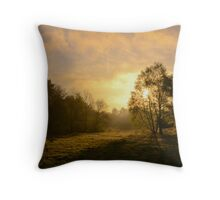 Midmorning Sun Throw Pillow