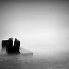 Submerged by fernblacker