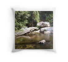 Stream with rocks Throw Pillow
