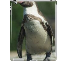 Posing Penguin iPad Case/Skin