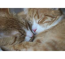 Brothers Touch Noises Photographic Print