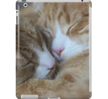 Brothers Touch Noises iPad Case/Skin
