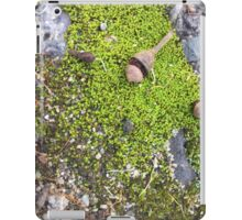 Green Nut iPad Case/Skin