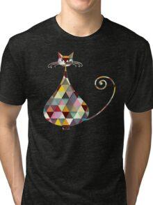 COLORFUL  CAT Tri-blend T-Shirt