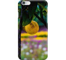 Lemon Tree 'The Lost Gardens of Heligan' iPhone Case/Skin
