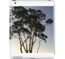 Foyer Gum iPad Case/Skin