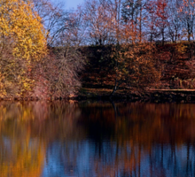 Indian summer reflections at the pond | waterscape photography Sticker