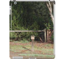 Mail iPad Case/Skin