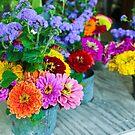 Summer Blooms by meadaura