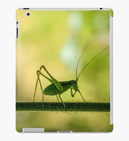 cricket in green  iPad Case/Skin