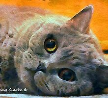 Just Cats II: Have I Melted Your Heart Yet? by Bunny Clarke