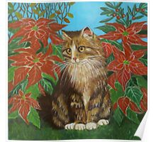 Cat among poinsettas. Poster