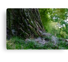 Fluffy Tree Canvas Print