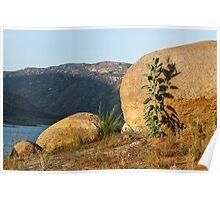 El Capitan Reservoir, San Diego County, California 5 Poster