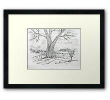 Poygan Payment Tree Framed Print