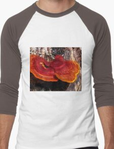Guatemala Tree Fungus Men's Baseball ¾ T-Shirt