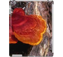 Guatemala Tree Fungus iPad Case/Skin
