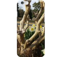 Twisted Daffodils iPhone Case/Skin