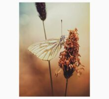 A Green-veined White (Pieris napi)...  T-Shirt