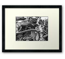 Natural Sculpture Framed Print
