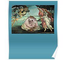 Birth of a Hedgehog Poster