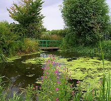 Varden's Pond by lezvee