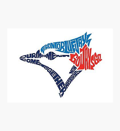 Toronto Blue Jays (Blue) Photographic Print