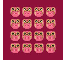 Pink Owls Photographic Print
