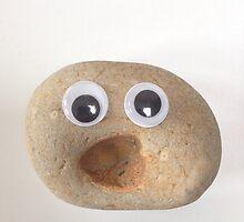 Very surprised pebble by Susannah Burton-Hopkins