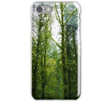 Looking Up Through the Trees iPhone Case/Skin