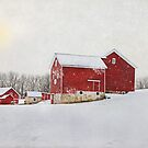 Winter At Maple Row Farm 2014 by Pat Abbott